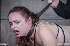 Bella Rossi - Bella Rossi BaRS: Bound, and collared, Bella is destroyed by cock, mentally, physically! (Thumb 10)