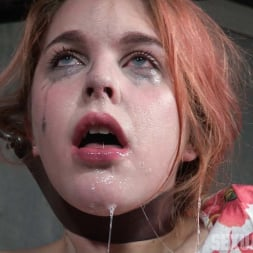 Amarna Miller in 'Insex' Suffers though a brutal face fucking, while cumming and cumming on a sybian! (Thumbnail 9)