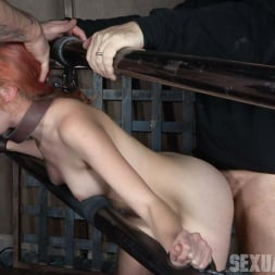 Amarna Miller in 'Insex' is one sexy redhead, who gets destroyed by cock and orgasms while bound and helpless! (Thumbnail 1)