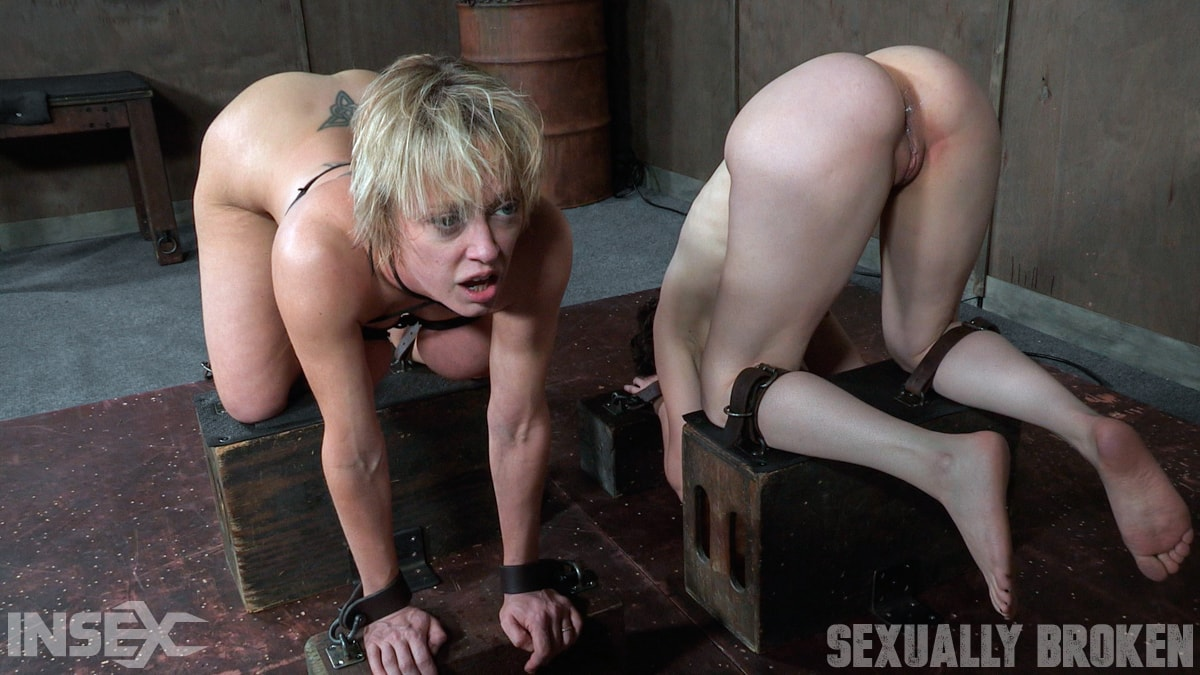 Insex 'Bonnie Day and Dee Williams are tag teamed to destruction. Both girls are roughly fucked to the ground' starring Dee Williams (Photo 15)