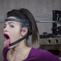 Eden Sin in 'Insex' BaRS part 1: The Return of the Face Fucking Machine, this girl was made for this! (Thumbnail 3)