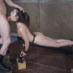 Eden Sin in 'Insex' BaRS part 2: Edin is put on the board of destruction. Brutal fucking, and deepthroating! (Thumbnail 1)