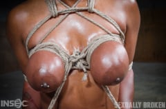 Lisa Tiffian - Oiled down Lisa Tiffian worships two big cocks with drooling deepthroat, strict rope bondage! (Thumb 04)