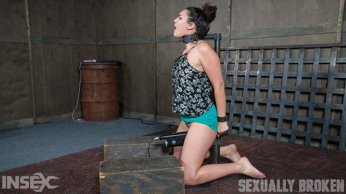 Insex 'is bound in hard metal, stuck on a vibrator, and brutally face fucked, stupid.' starring Paisley Parker (Photo 2)